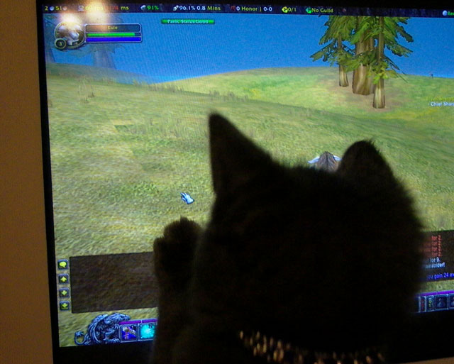 Spooky plays World of Warcraft too!